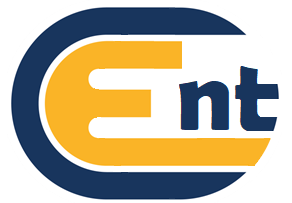 Everett Consulting NT